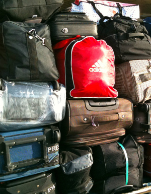 Skulls, pets, babies and the dead: The strangest things people try to smuggle on airplanes