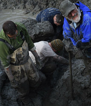 Two farmers in Michigan unearth woolly mammoth remains