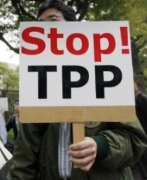 Trans-Pacific Partnership faces criticism in Congress