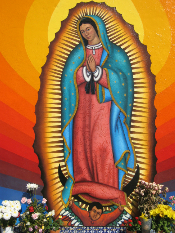 catholic singles in guadalupe Meet guadalupe singles online & chat in the forums dhu is a 100% free dating site to find personals & casual encounters in guadalupe.