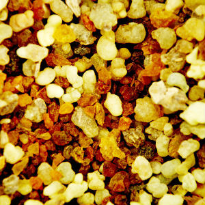 Wise men still seek frankincense and myrrh today for its many health benefits