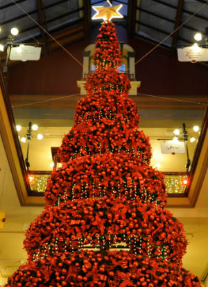 All Around the World: The most fun and beautiful Christmas trees ...
