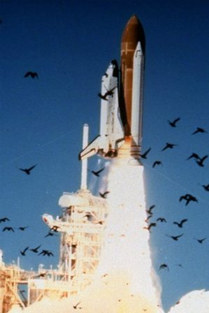 30 YEARS AFTER CHALLENGER - What happened to the crew? Why ...