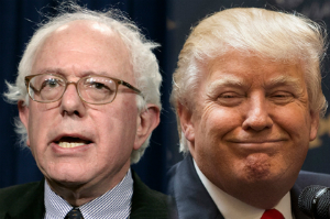 Trump, Sanders win with commanding leads in New Hampshire - but what happens next?