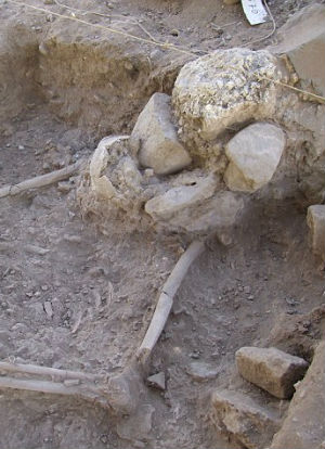 A prehistoric village may show evidence of one of the world's first farmers (PLoS One).