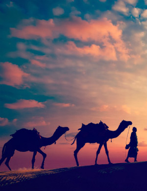 We DON'T know it all! Discovery proves Silk Road reached farther than believed