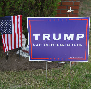 Trump campaign signs stolen in series of stunts - Owners resort to trickery