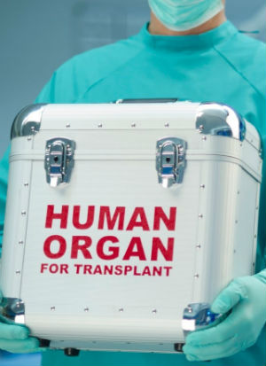 'The killing of an innocent human being is always wrong'- Doctors suggest killing coma patients to harvest organs