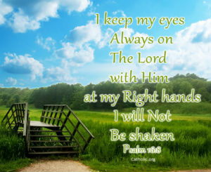 Your Daily Inspirational Meme: Psalm 16:8