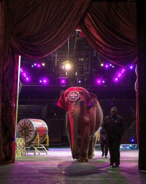 'The Greatest Show on Earth' to pack up for the last time after 146 years