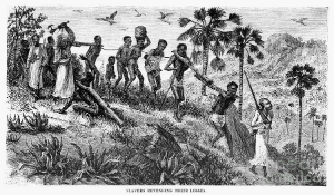 Have the graves of the first African slaves been found?