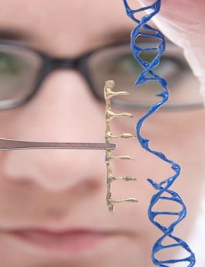 Should Catholics completely reject human gene editing?
