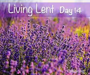 'Living Lent': Tuesday of the Second Week of Lent - Day 14