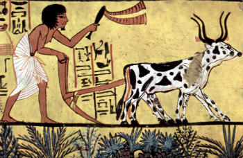 Egyptian civilization was among the first to perfect neolithic agriculture. Were these developments forced by a cosmic cataclysm?