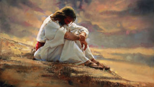 We Are Invited To Follow Jesus Into The Desert
