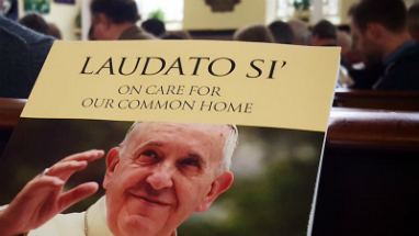 Pope Francis has made clear that care for creation is a major concern of the Church and humanity.