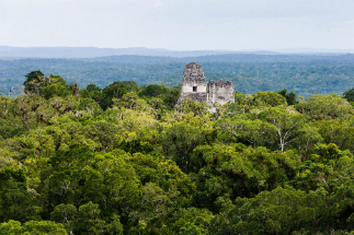 The jungle continues to hide ancient cities and secrets, which only now are being rediscovered.