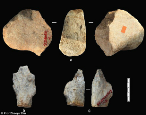 These hand axes are dated to 2.1 million years of age. Photo: Prof Zhaoyu Zhu.