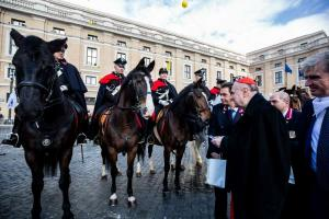 Holy cow: Farm animals receive blessing outside St Peter's Square