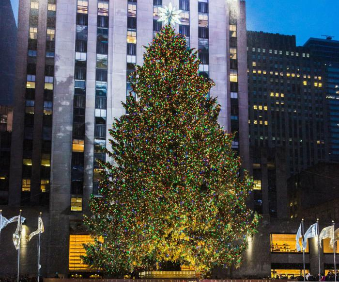 Outside the Rockefeller Building in New York a 78-foot tree weighing ten tons can be found.
