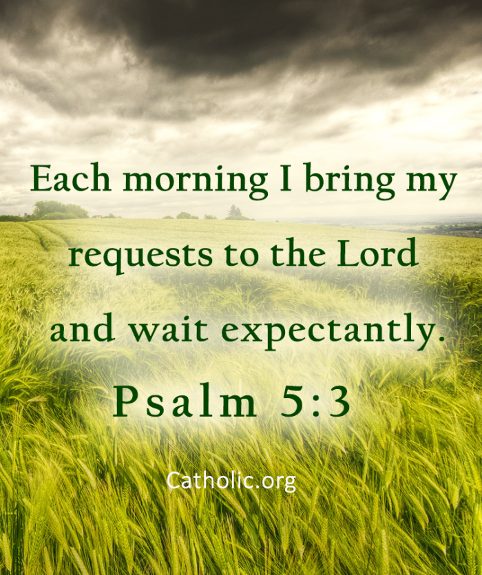 I bring my requests to the Lord
