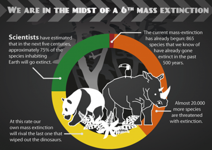 the major causes of animal extinction in our planet According to one recent study, species are going extinct between ten and  the  cause of this great acceleration in the loss of the planet's.