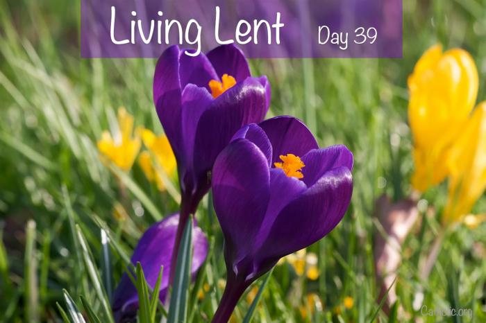 'Living Lent': Saturday of the Fifth Week of Lent - Day 39