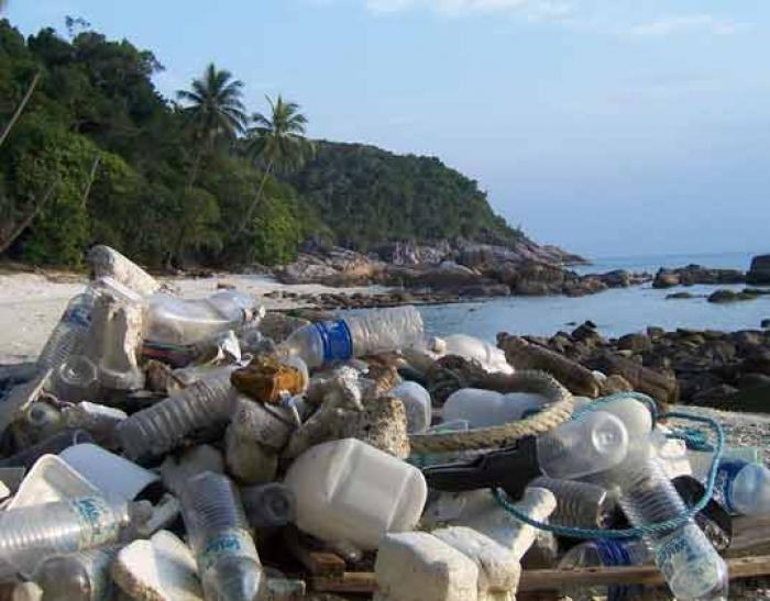 Plastic bottles piled on the beach. These are just a fraction that of the bottles that end up in the ocean from one beach, in the course of a day. Globally, the situation has reached crisis levels.