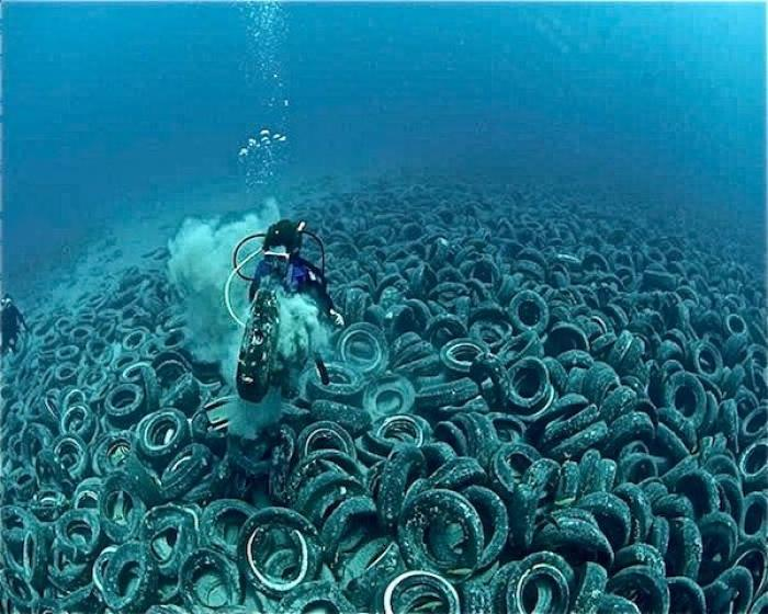Tires dumped into the ocean release toxins into the water than can poison the environment.