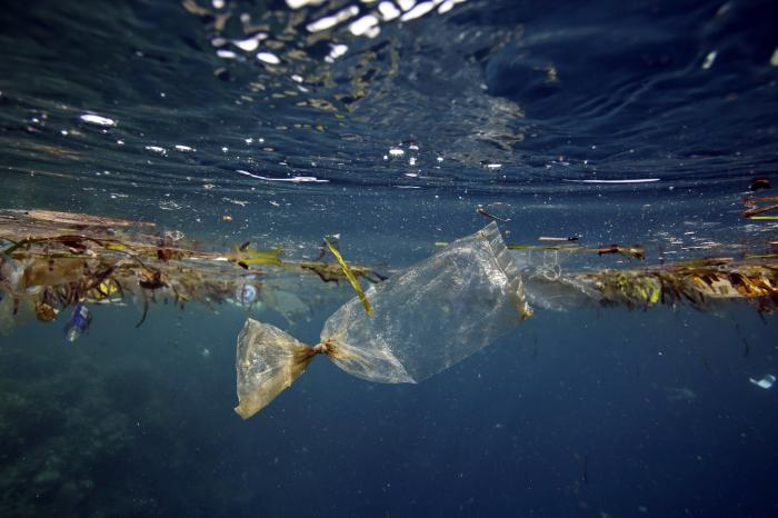 Plastic in the ocean confuses predators. A clear baggie looks like a tasty jellyfish to a turtle.