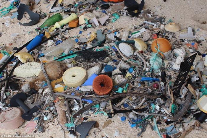 Henderson Island is covered in plastic debris.