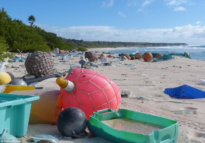 Plastic junk covers the surface of Henderson Island.