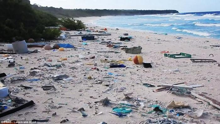 Plastic covering Henderson Island