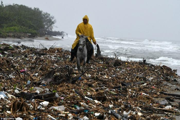 A man rides his horse on the beach, an experience marred by the incredible quantities of rubbish.