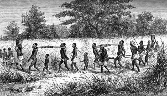 It was Africans who often formed the first link in the transatlantic slave trade.