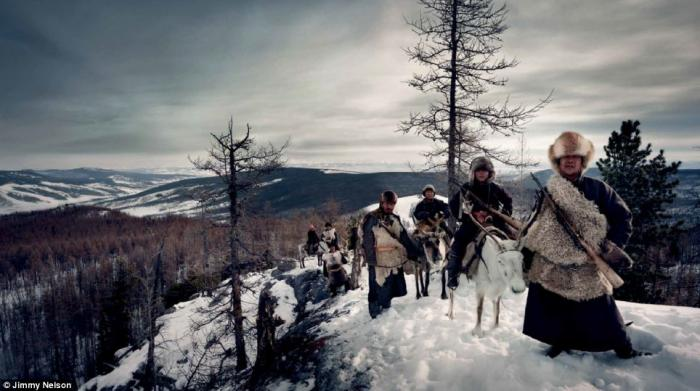 The Tsaatan (reindeer people) of northern Mongolia are a nomadic tribe who depend on reindeer for ne