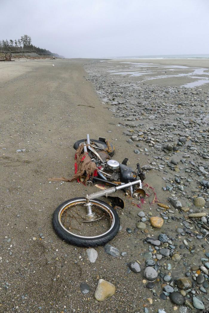 This motorcycle washed ashore earlier in the year, the unlucky owner possibly a victim of the tsunam