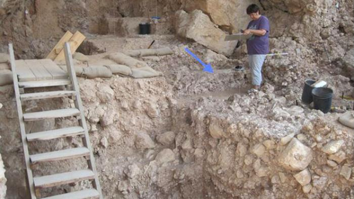 Ongoing since 2000, excavations in Qesem Cave have been conducted by Professors Avi Gopher and Ran B
