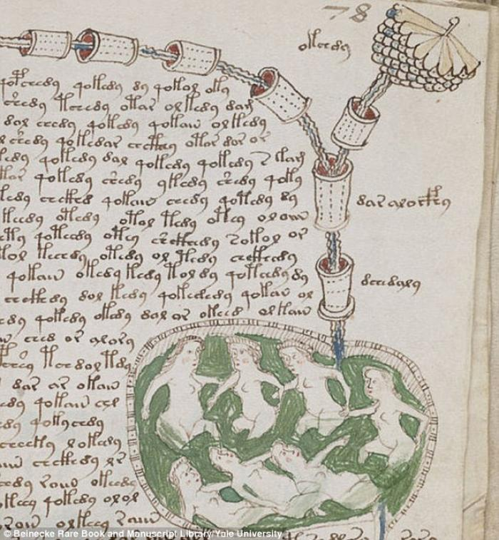 The Voynich manuscript, pictured, was discovered in an Italian monastery in 1912 by book dealer Wilf