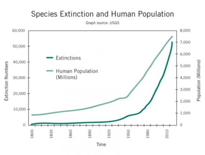 Correlation between human population and extinction, although this is misleading. The real correlati