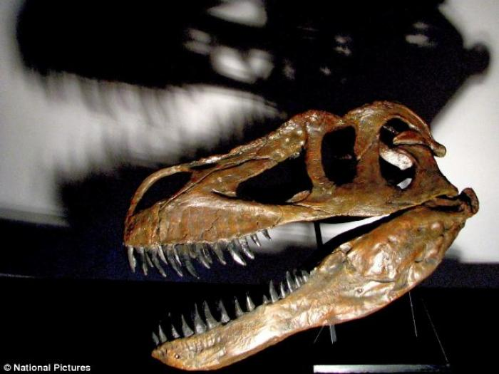 The enormous creature, named Torvosaurus gurney, was discovered in Lisbon, Portugal. It was more tha