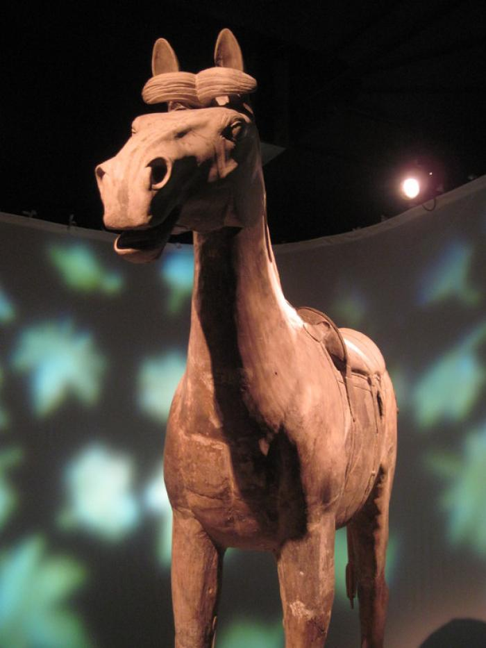 Even the horses in the massive terracotta army were each unique; no two were alike.