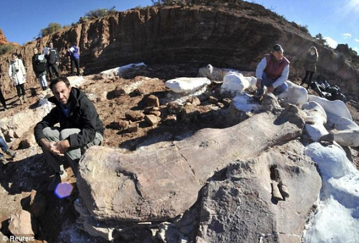 Paleontologists Jose Luis Carballido (L) and Ruben Cuneo pose next to the bones of a dinosaur at a