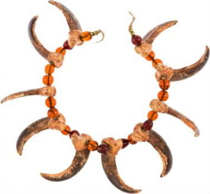 This necklace, made with the claws of a grizzly bear, was given to Buffalo Bill by Sioux chief Sitti