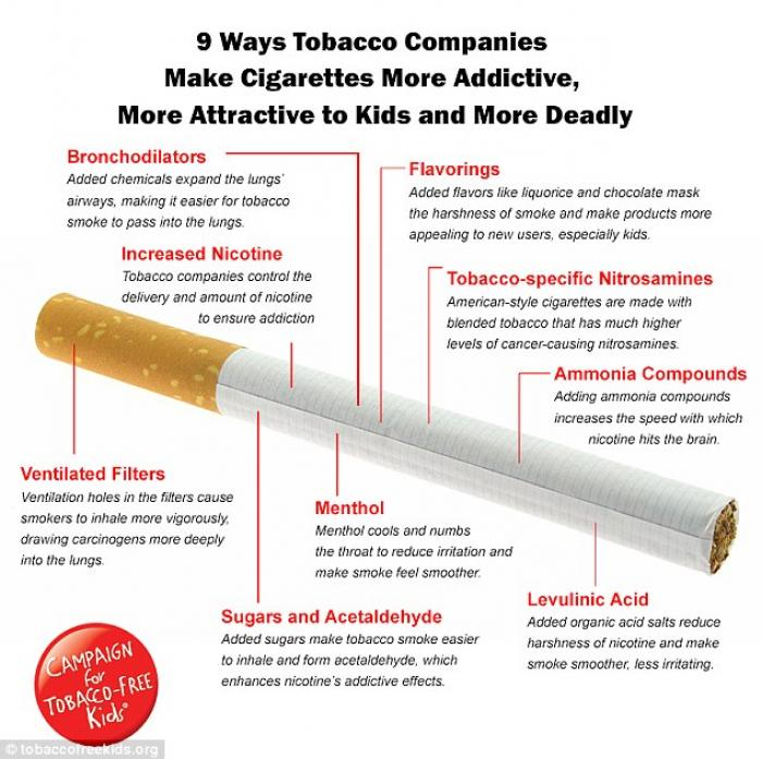 The Campaign for Tobacco-Free Kids has produced a revealing new infographic which explains how cigar