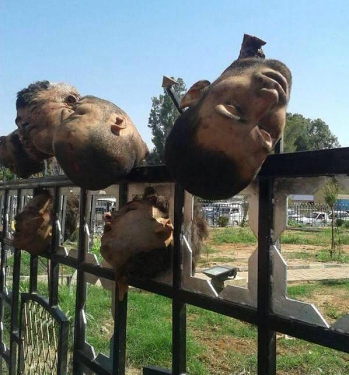 The heads of Syrian soldiers displayed on a fence outside a military base captured by the Islamic St