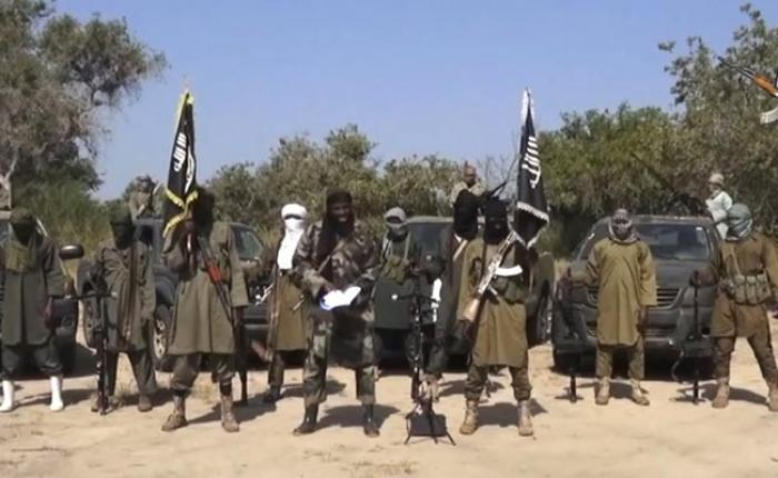 Self-proclaimed Boko Haram leader Abubakar Shekau took issue with comments made by the Nigerian gove