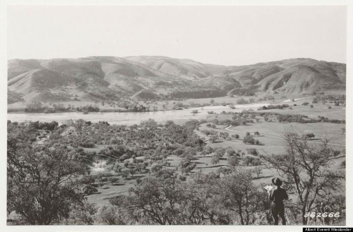 Salinas valley, heavily wooded in the late 19th or early 20th century.